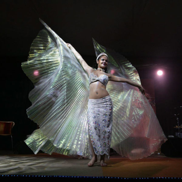 Performer with wings like outfitrs creating feeric image on stage during theme party